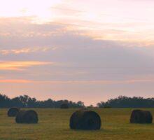 Sunrise over Hay Bales in Open Field Sticker