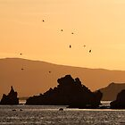 Sunrise At Mono Lake. by Alex Preiss