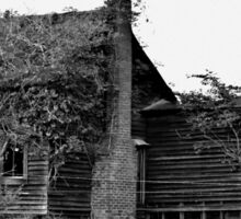 Old Abandoned House Overtaken by Trees and Vines Sticker