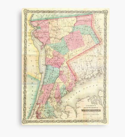 Vintage Map of Westchester New York (1864) Metal Print
