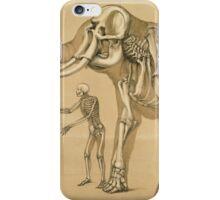 Vintage Elephant and Human Skeleton Illustration iPhone Case/Skin