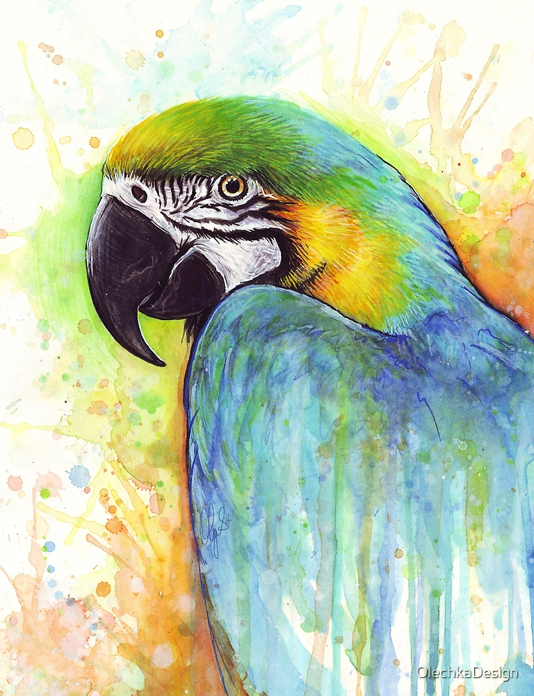Colorful Bird Painting, Macaw Parrot, Watercolor by OlechkaDesign