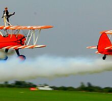 Wing Walkers by ncp-photography