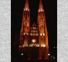 Votivkirche Church, Vienna Unisex T-Shirt