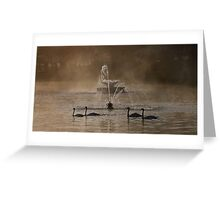 Symmetrical Swans Greeting Card