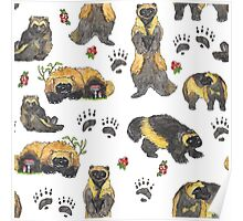 Wolverines and cranberry pattern Poster