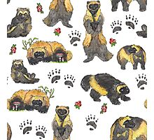 Wolverines and cranberry pattern Photographic Print