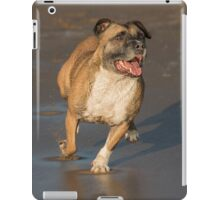 Staffordshire bull terrier running iPad Case/Skin