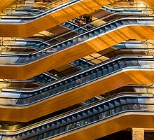 Modern Escalators by Bruno Beach