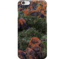 western and wet iPhone Case/Skin
