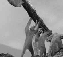 Honor the Fallen - Sloth Iwo Jima Sticker