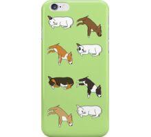 Lazy Bull Terrier - Green iPhone Case/Skin