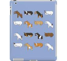 Lazy Bull Terrier - Blue iPad Case/Skin