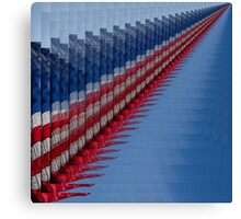 USA~USA! Canvas Print