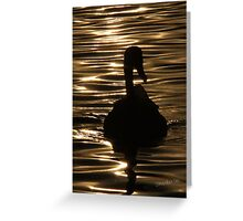 Swan Sunset Greeting Card