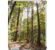 Gorge Trail iPad Case/Skin