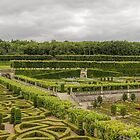 Gardens at the Chateau de Villandry, Loire Valley, France by Elaine Teague
