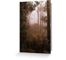 Bushwalking in the Fog By Lorraine McCarthy Greeting Card