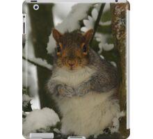 Snowy Squirrel iPad Case/Skin