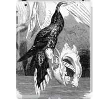 Drip Dry my tail feathers.  iPad Case/Skin