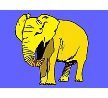 Yellow Elephant  Photographic Print