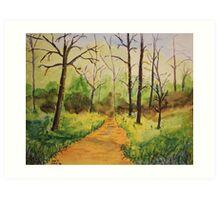 A Peaceful Woodland Path Art Print