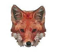 Low Poly Fox Photographic Print