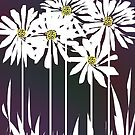 Spring Daisies by Ginny Schmidt