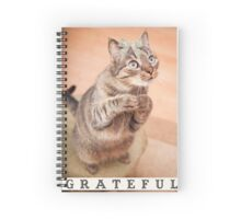 Cute cat with bow,grateful,typography,funny,happy, Spiral Notebook