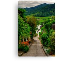 Path to the Danube Canvas Print