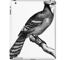 Johnny Jay to Save the Day.  iPad Case/Skin