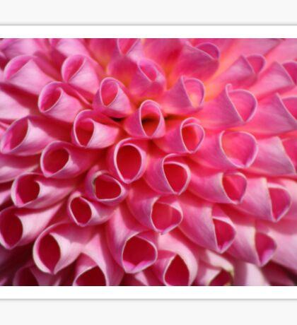Pink Circle Petals Sticker