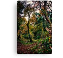 Forest Trees HDR Canvas Print