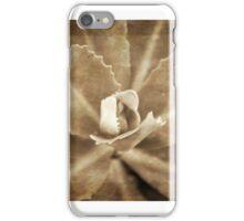 Sedum unflolding iPhone Case/Skin