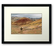 A Lone Tree In The Hills ©  Framed Print