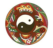 Vintage Psychedelic Yin Yang Turtle Photographic Print