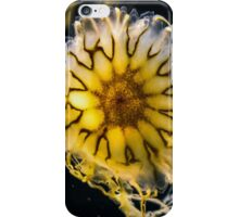 Otherworldly Jelly iPhone Case/Skin