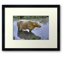...its so hot in Holland for a blond Scottish Lass... Framed Print