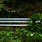 Secluded Seating by PictureNZ