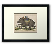 Vintage Painting of Men Riding an Elephant Framed Print