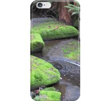 Australian Rainforest Stream iPhone Case/Skin