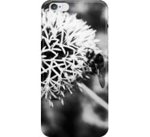 plant airfield iPhone Case/Skin
