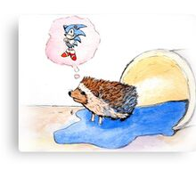 Hedgehog Dreams Big Canvas Print