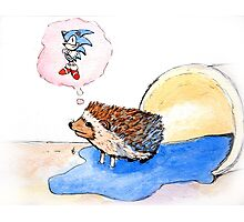 Hedgehog Dreams Big Photographic Print