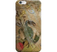 Crab and rockpool iPhone Case/Skin