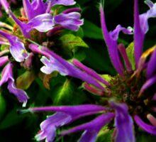 flowers of camelot Sticker