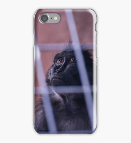 Monkey Bars iPhone Case/Skin