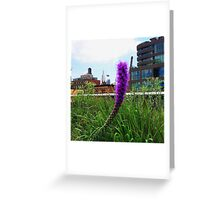 Buzzing Around Greeting Card