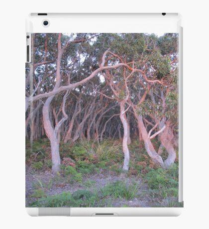 Koala's Bride Aisle iPad Case/Skin