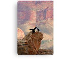 Grand Canyon Ravens Canvas Print